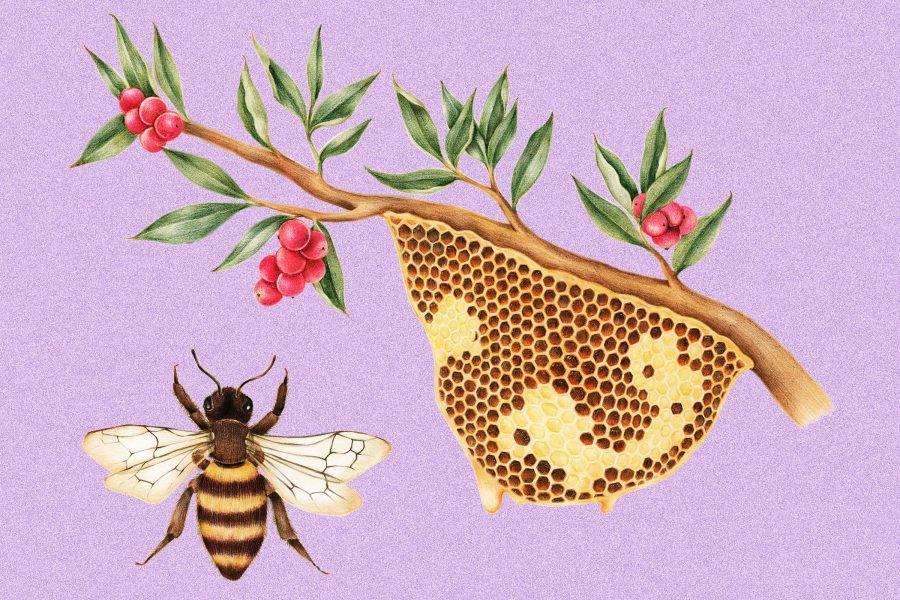 130+ Unbeelievably Great Bee Jokes & Puns