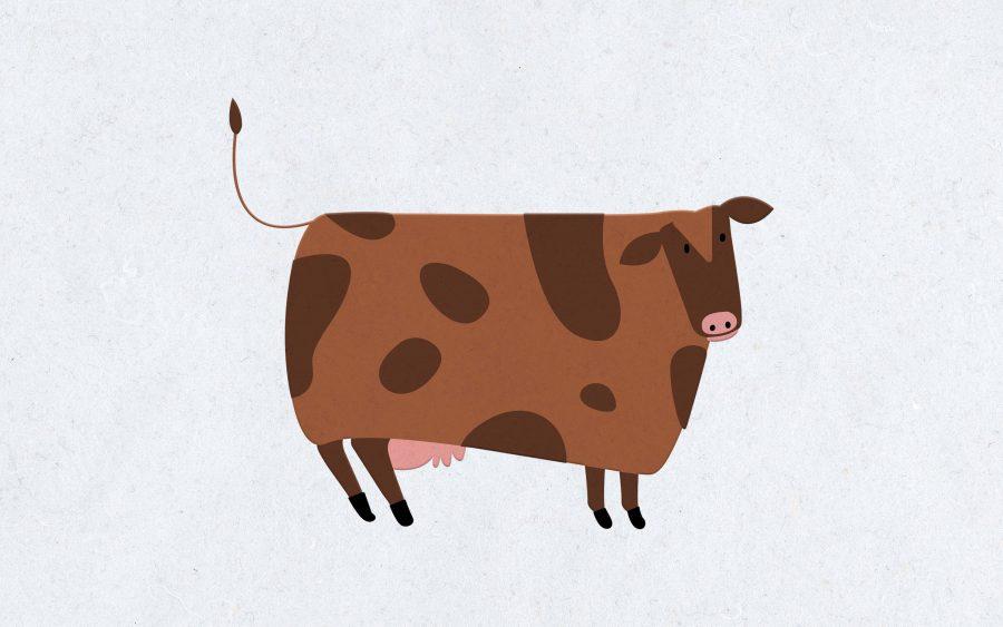 75 Cow Jokes