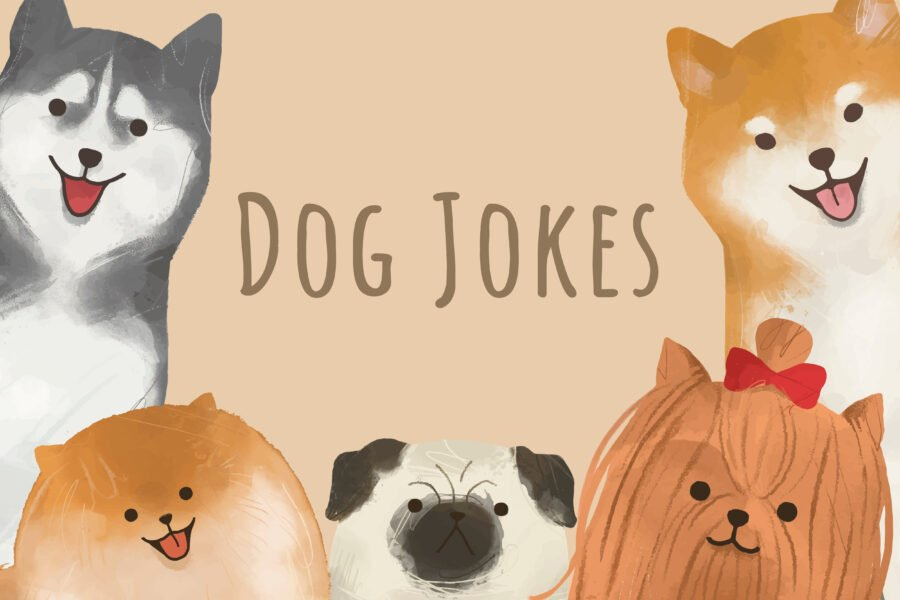 80+ Dog Jokes