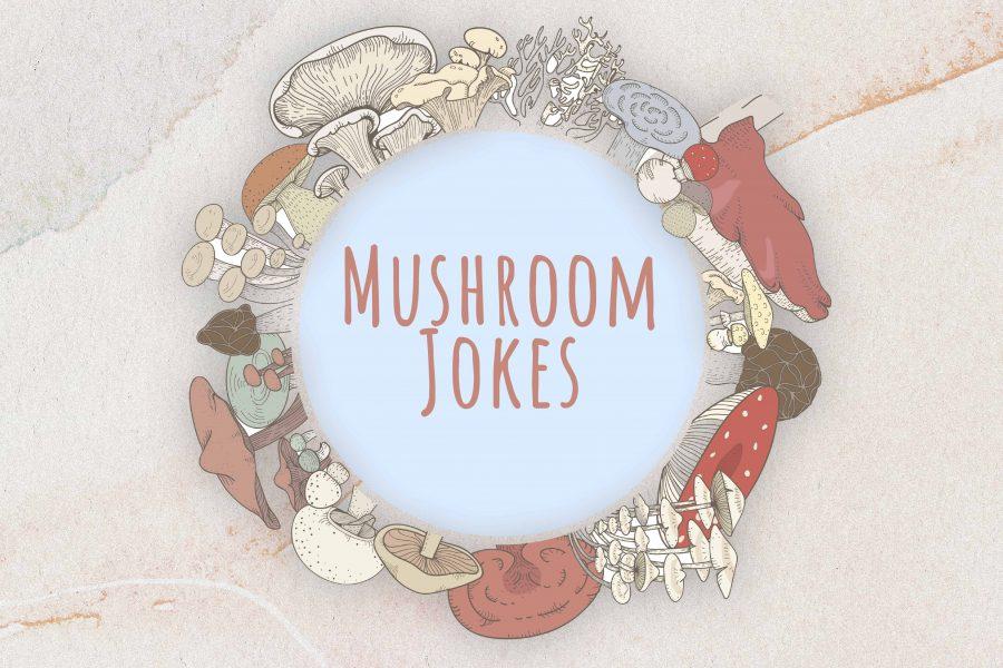 50+ Mushroom Jokes