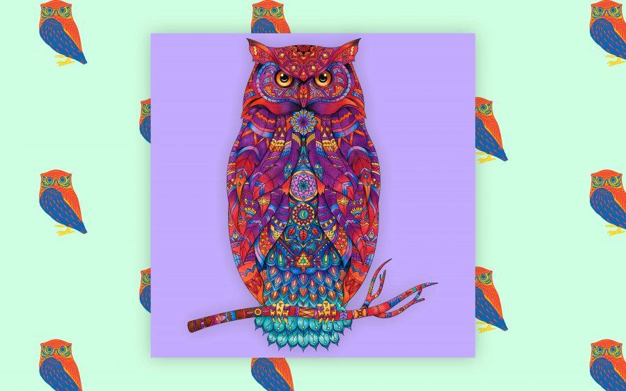 120+ Hoo-tiful Owl Names!