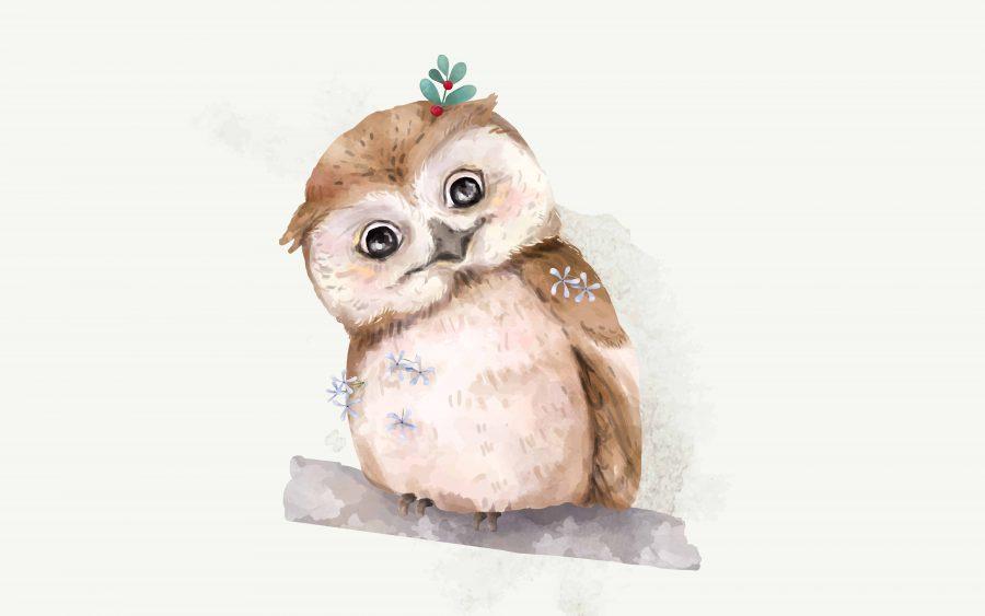 55 Owl Puns and Jokes