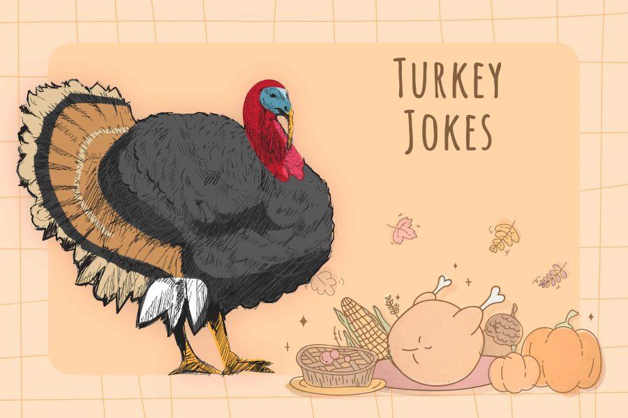 50 Turkey Jokes