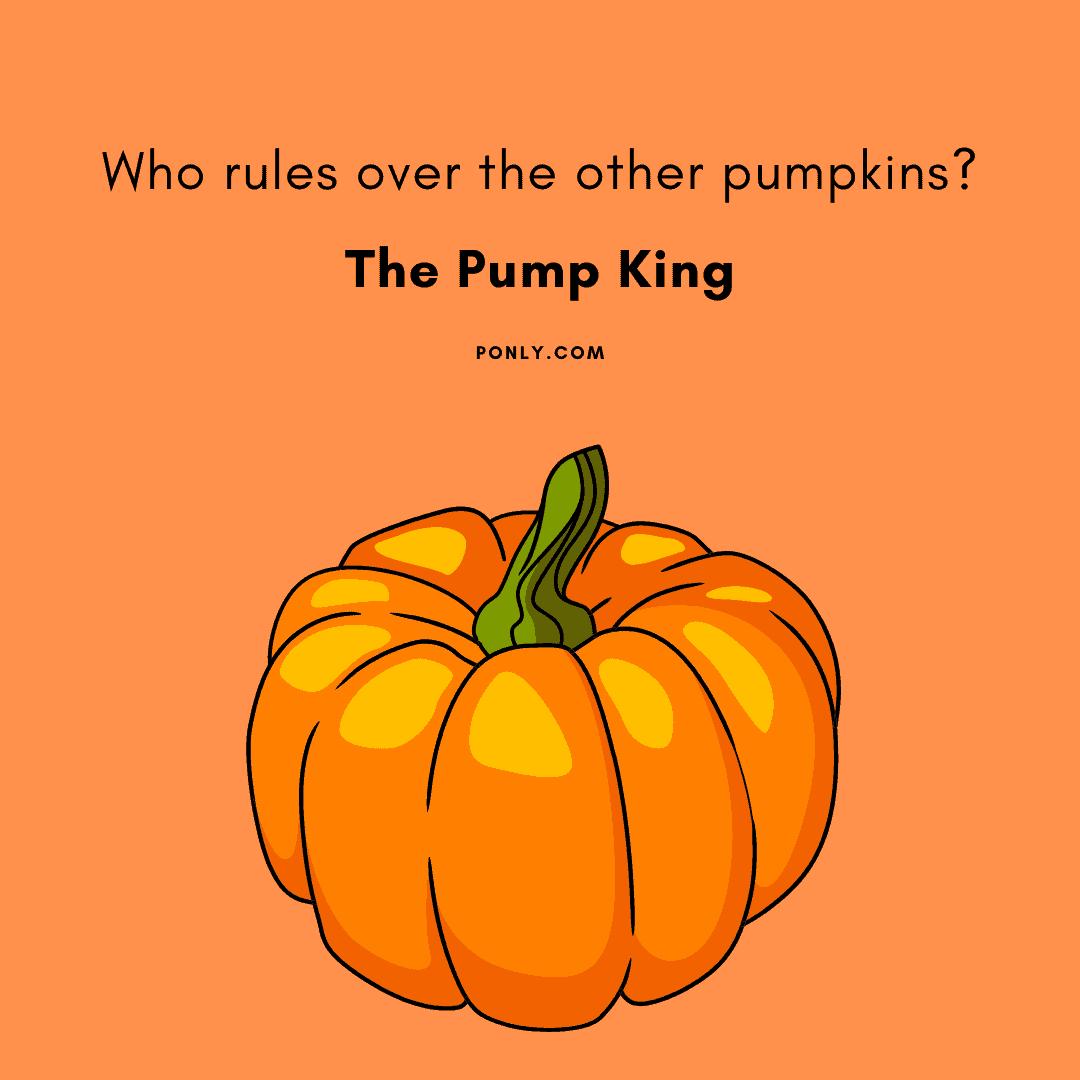pumpkin jokes